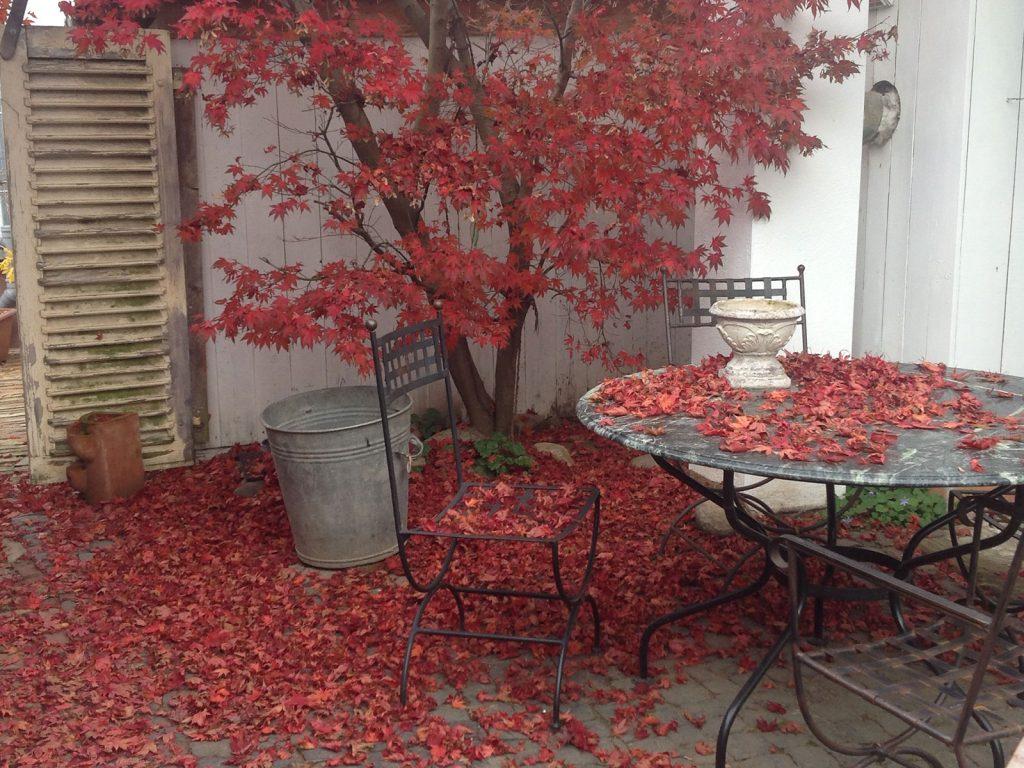 Herbstfest im HOF 25